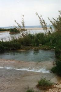Veduta della foce del fiume Cesano